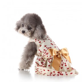 Pets. Love. Earth Dress With Golden Bow knot