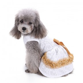 Pets. Love. Earth White Pet Dress With Golden Bow