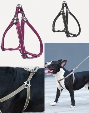 Dogness Herringbone Webbing Harness