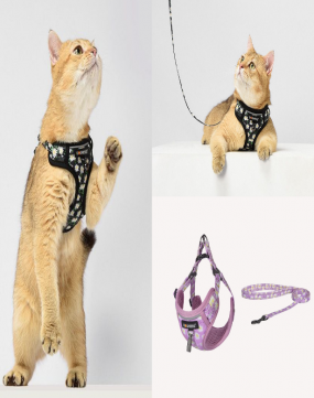 Dogness Leash And Harness For Cats