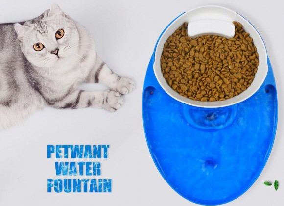 3 in 1 Pet Automatic water fountain